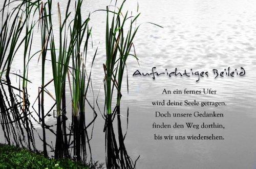 Karte Trauer Spruch Schilf, Liefermenge U003d 5: Amazon.de: Bürobedarf U0026  Schreibwaren