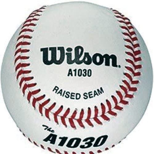 DS Wilson A1030 Baseball Ball