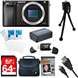 Sony Alpha a6000 ILCE6000/B 24.3 Interchangeable Lens Camera - Body only BUNDLE with 64GB Class 10 Card, Spare Battery, Deluxe Padded Case, Micro HDMI Cable, DVD SLR Guide, SD Card Reader, and MORE