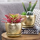 MyGift Rose Gold Starburst Design Ceramic Planter