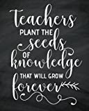 Teachers plant the seeds of knowledge that will