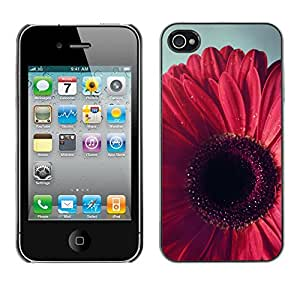 [Neutron-Star] Snap-on Series Teléfono Carcasa Funda Case Caso para iPhone 4 / 4S [Pétalo rosado floral púrpura]