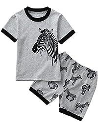 Clearance Toddler Kids Baby Boys Pajamas Cartoon Horse Printed Tops Shorts Outfits Set