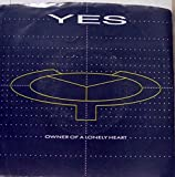 YES 45 RPM Owner Of a Lonely Heart / Our Song
