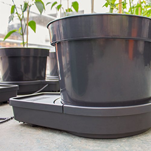 ❥ PLANT IT 01-075-100 GoGro Essential 4 Kit-15L Pots Watering System, Noir Hydroponic System 3