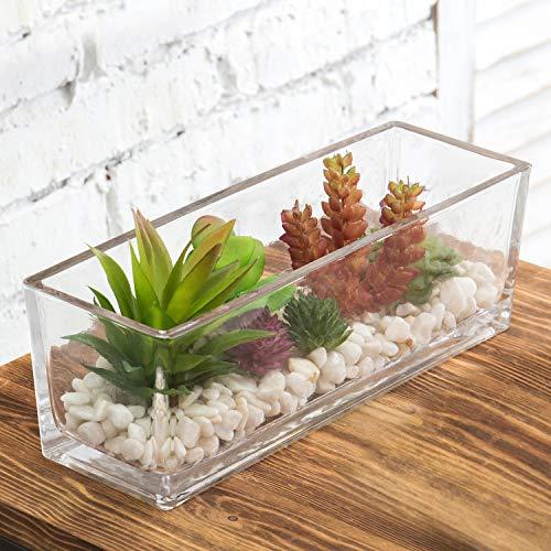 MyGift 12-Inch Artificial Succulent Plant Arrangement in Clear Rectangular Glass Terrarium Vase