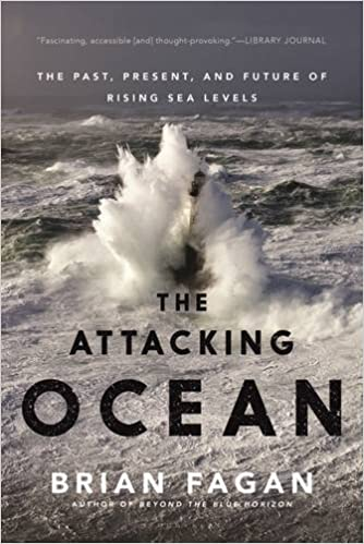 Image result for attacking ocean fagan