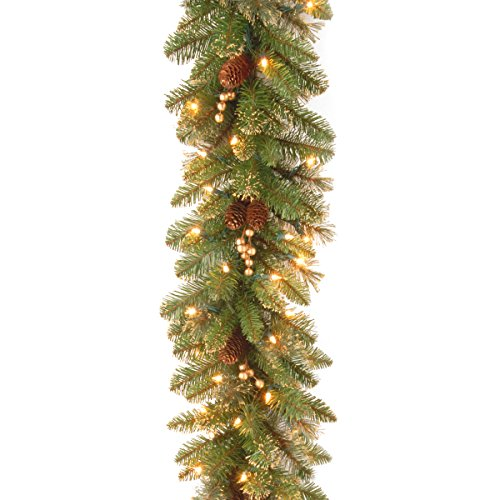 National Tree 9 Foot by 10 Inch Glittery Pine Garland with Gold Berries and 100 Clear Lights (GPG3-341-9A) (Door Garland Lights With)
