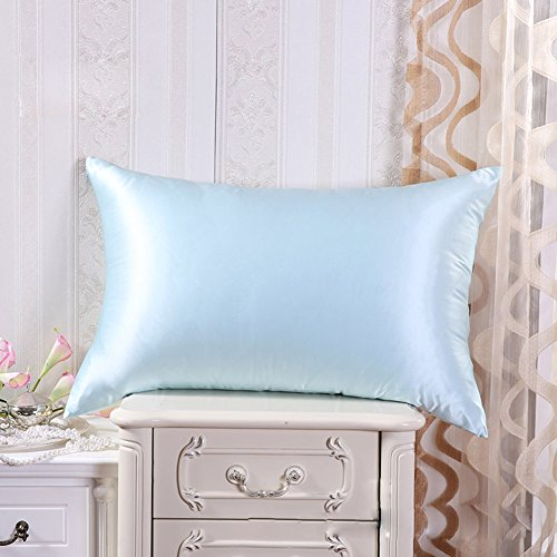 Cozysilk 100 Pure Mulberry Silk Pillowcase for Hair with Hidden Zipper, 19 momme (Queen, Light Blue)