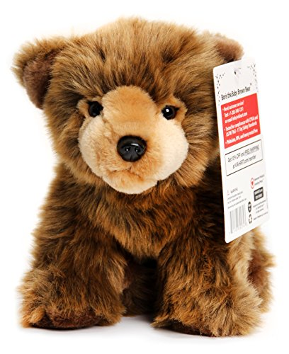 Grizzly Bear | 9 Inch Realistic Looking Stuffed Animal Plush | By Tiger Tale Toys (Brown Bear Plush Stuffed Animal)