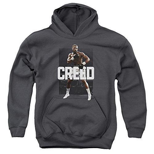 Creed Drama Boxing Sports Movie Fighting Stance Pose Big Boys Youth Hoodie Gray