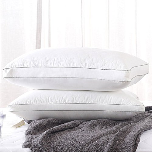 Fancy Collection 2 Pc Queen Size Soft Bed Pillows for Sleeping, Hypoallergenic Bedding Pillow, Anti-Mite Silk Cotton and Feather Velvet for Breathable and Softer Sleeping New (Pillows Eco Friendly)
