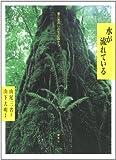 Mizu ga nagareteiru : Yakushima no inochi no mori kara