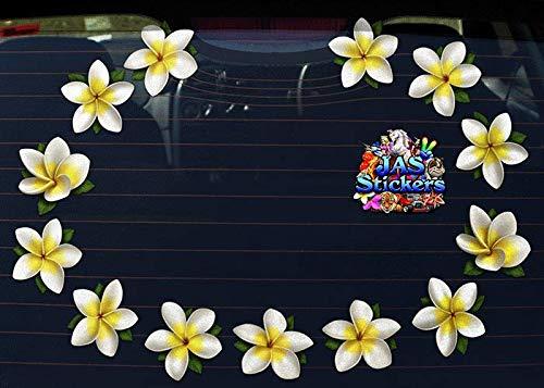 Singles Frangipani Large Vinyl Sticker Pack For Laptop Luggage Bicycle Bike Caravans Van Camper Trucks /& Boats ST00074WT/_LGE White JAS Stickers/® FLOWER Plumeria Car Decal