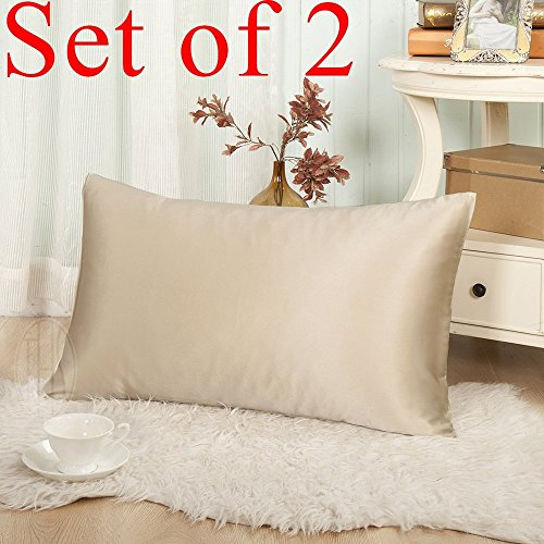 THXSILK Set of 2 19mm Mulberry Silk Pillowcase for Hair and