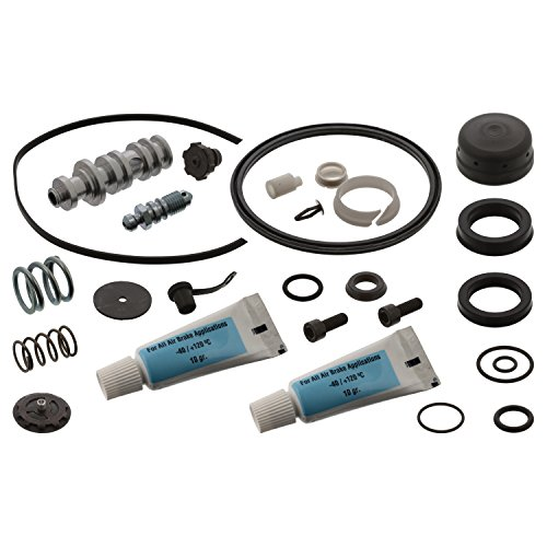 febi bilstein 45692 Clutch Slave Cylinder Repair Kit with lubricant, pack of one: