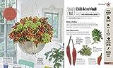 Indoor Edible Garden: Creative Ways to Grow