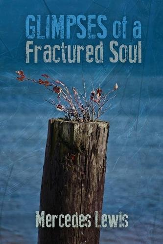 Download Glimpses of a Fractured Soul pdf epub