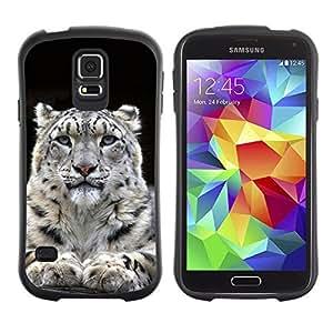 Hybrid Anti-Shock Bumper Case for Samsung Galaxy S5 / Majestic Mountain Lion Blue Eyes