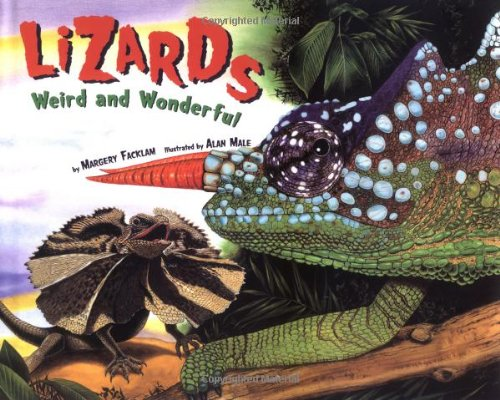 Lizards Weird and Wonderful
