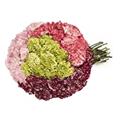 Farm Fresh Natural Novelties Carnation - 100 Stems