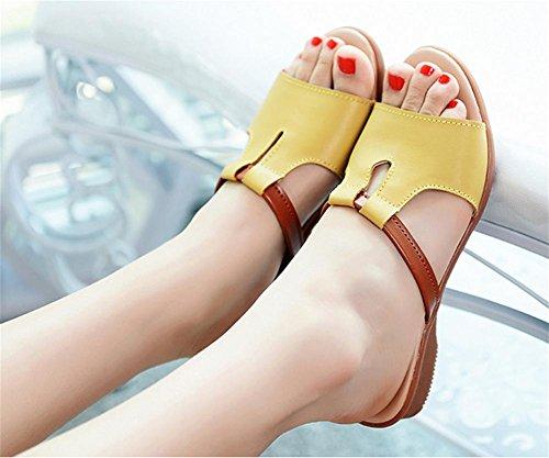 Los deslizadores frescos del verano señoras de gran tamaño forman los zapatos de la playa 1