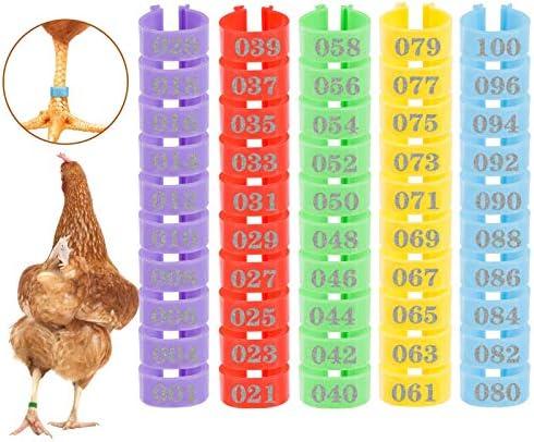 MEWTOGO 100 Pcs Chicken Leg Rings- Color