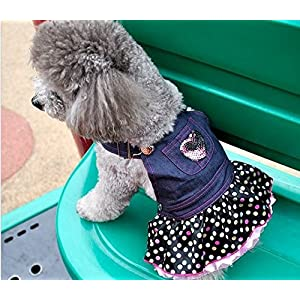 WONDERSKY Pet Dog Jean Dresses Puppy Costume Clothes Handmade Sequins Heart Lace Skirt Hemline