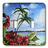 3dRose lsp_44366_2 Double Toggle Switch with Island Scene with Hibiscus Flowers