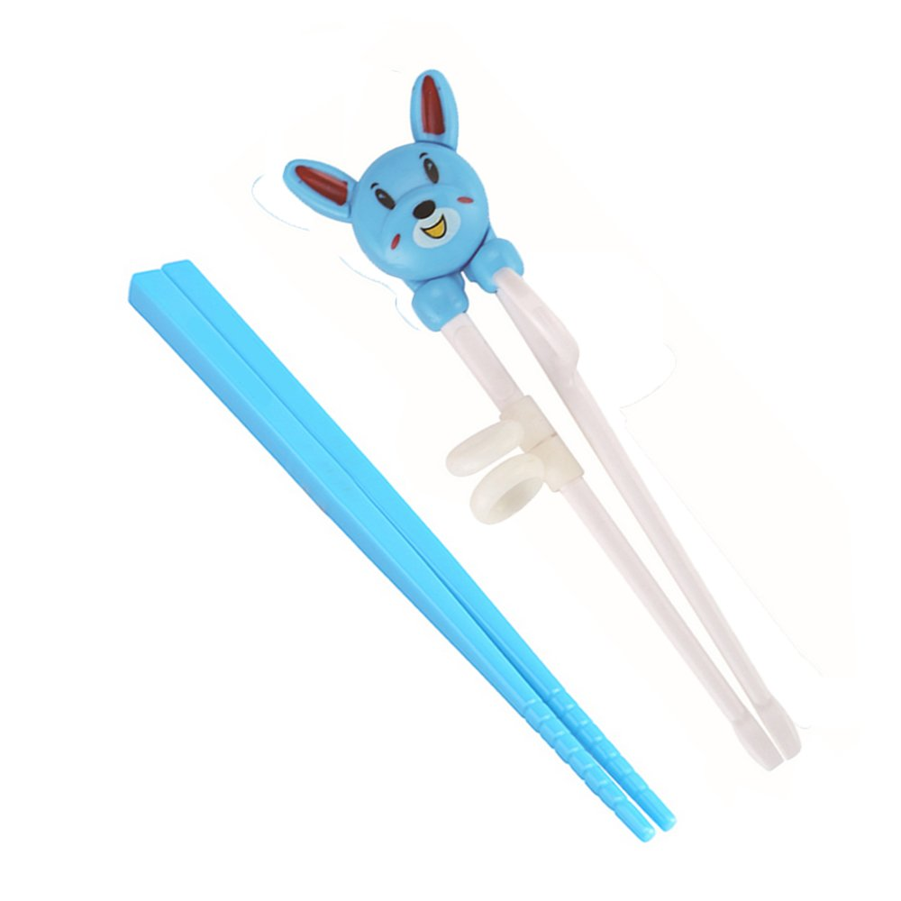 Sealive Baby Training Chopsticks Helper Kids Beginner Learning With Case for Children,with Cute Animals Training Chopsticks Flatware Portable Set for Right Handed - 2 Pair,Blue
