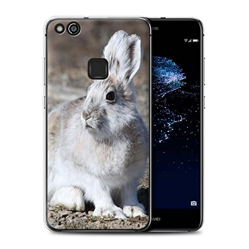 stuff4-gel-tpu-phone-case-cover-for-huawei-p10-lite-white-arctic-hare-design-arctic-animals-collecti