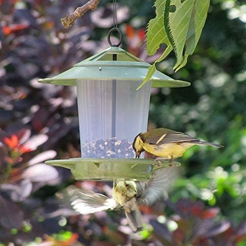 Eco Beacon Bird Feeder with FREE Scoop