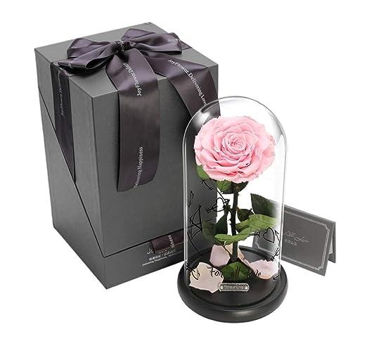 ALYR Conservada Flor, Rosa Encantada Caja de Regalo Rosa ...