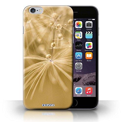 Hülle Case für iPhone 6+/Plus 5.5 / Gelb Blume Entwurf / Blumen Fee Tropfen Collection