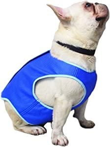 Preferhuse Dog Cooling Vest Pet Swamp Cooler Jacket Mesh Coat for Small Medium Large Doggy Cats