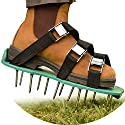 """Healthy and Reviving Lawn Treatment 