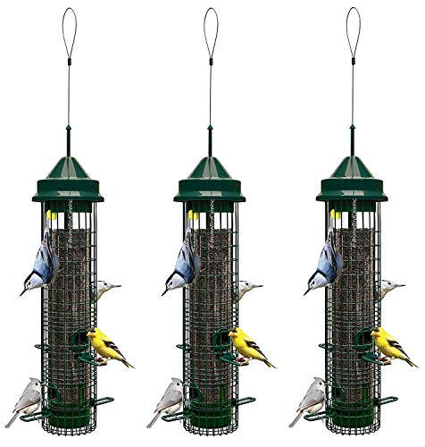 3 Pack Brome Squirrel Buster Classic Squirrel Proof Bird Fee