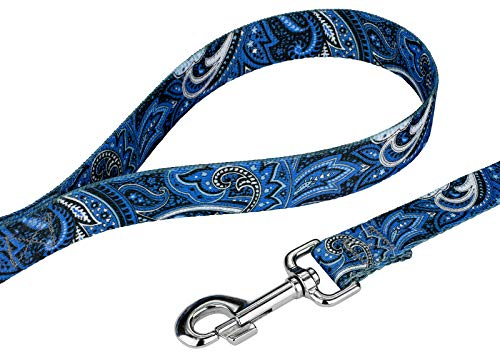 Picture of Country Brook Design 5/8 Inch Blue Paisley Dog Leash - 6 Foot