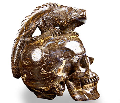 Skullis Matrix Opal Carved Crystal Skull with Lizard, Fine Art, Hand Carved Gemstone Sculpture, Reiki Healing Stone Statue. (Matrix Opal Skull with Lizard)