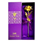 QuickGet 24k Gold Rose Foil Flowers , Rose Presents for Birthday, Gift for Girlfriend, Party, Wedding, Mother's Day, Romantic Gift for Her in Gift Box and Bag