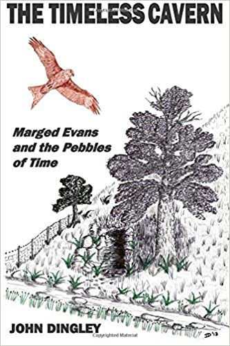 Book The Timeless Cavern: Marged Evans and the Pebbles of Time: Volume 1 by John Dingley (2014-04-02)