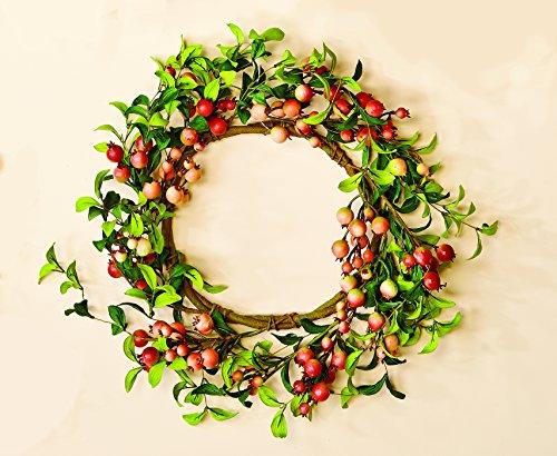 - Worth Imports Rose Hip Wreath, 20