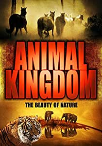 Animal Kingdom: Awesome Nature