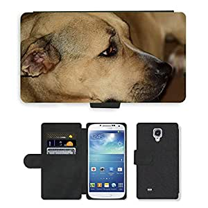 Hot Style Cell Phone Card Slot PU Leather Wallet Case // M00112246 Dog Pitbull Canine Animal Pet Cute // Samsung Galaxy S4 S IV SIV i9500