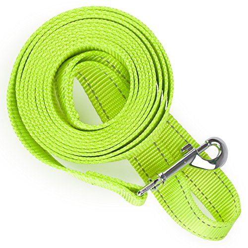Brite Reflective Dog Lead - Weebo Pets Reflective Nylon Safety Leash (8 ft.)