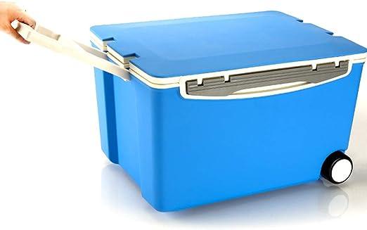 ZLSANVD Nevera portátil, Caja del refrigerador 40L Capacidad mini ...