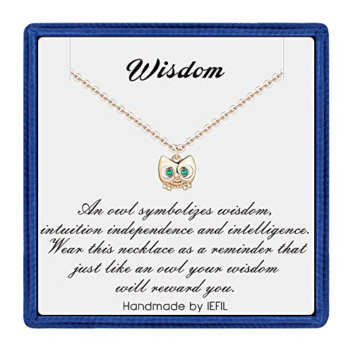 PAERAPAK Teacher Appreciation Gifts Owl Necklace - 14K Gold Filled CZ Owl Pendant Necklace Inspirational Gifts for Women Dainty Necklace Teacher Gifts for Women Wisdom Owl Necklace Gifts for Teachers ()