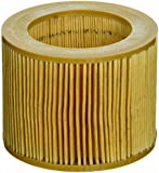 Killer Filter Replacement for Ingersoll Rand 88171913 (Pack of 2)