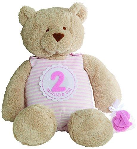 Mud Pie Milestone Plush Bear Nursery Décor, Pink