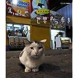 岩合光昭の世界ネコ歩き チリ ブルーレイ【NHKスクエア限定商品】